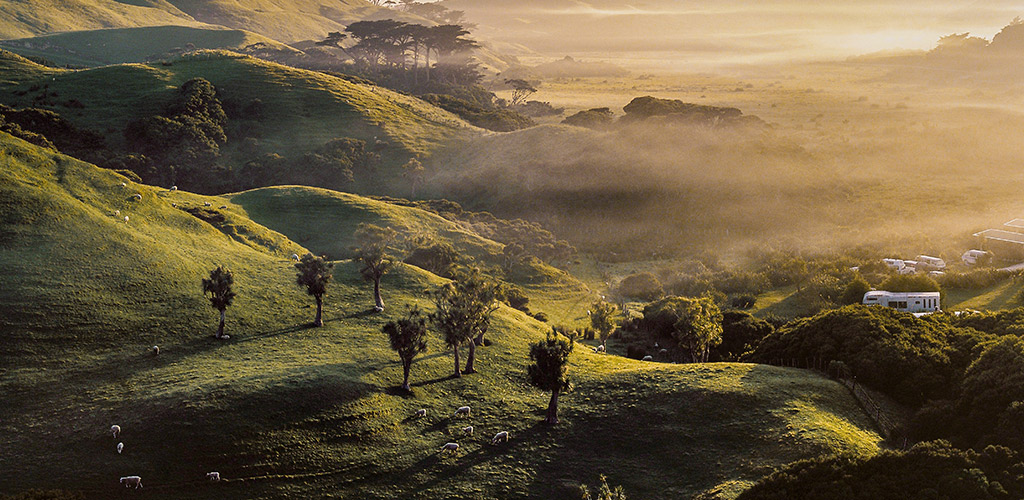 WEP Header - New Zealand - Fields